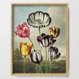 Tulips : Temple of Flora of New illustration of the sexual system of Carolus von Linnaeus Serving Tray