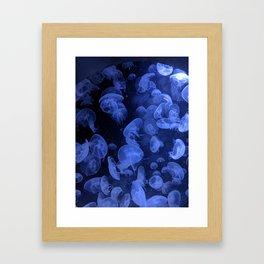 bloo Framed Art Print