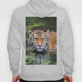 Tiger | Tigre Hoody