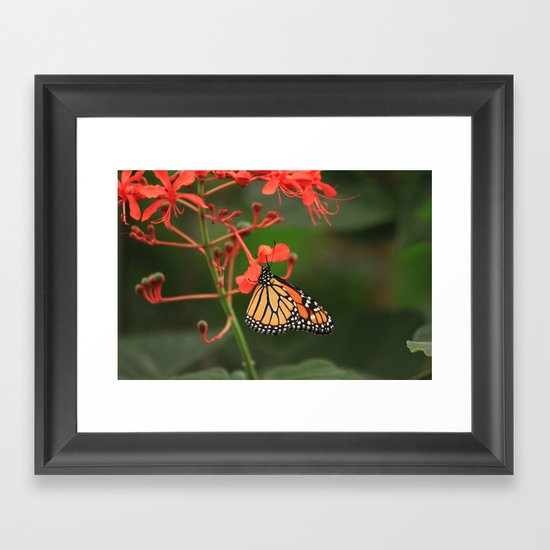 Special Request Framed Art Print