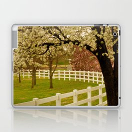 Spring Has Sprung! Laptop & iPad Skin