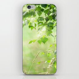 Birch leaves iPhone Skin