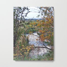 From the Forest to the Sea Metal Print