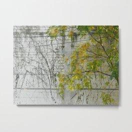 Arbre et Mur Metal Print