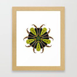Indian Tribal Feather Star Framed Art Print
