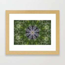Nigella Plant 1 Framed Art Print