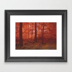 Fog-Wood Framed Art Print