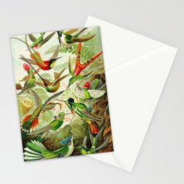 Kunstformen der Natur (Art Forms in Nature)a book of lithographic and halftones. Hummingbirds Stationery Cards