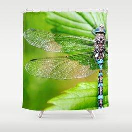 Haku (3) Shower Curtain