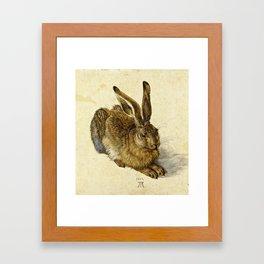 Albrecht Durer - Hare Framed Art Print