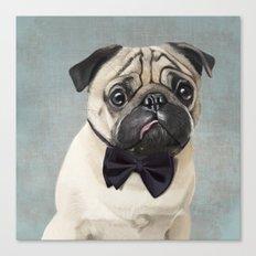 Mr Pug Canvas Print