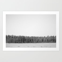 Tundra forest Art Print