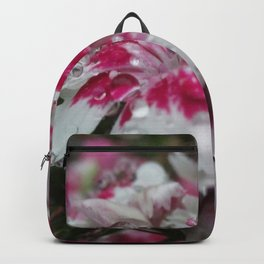 Dewy Dianthus Backpack