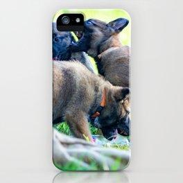 Wild Puppies Herder-Shepherds iPhone Case
