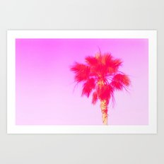 Pink Palm Dreams Art Print