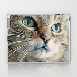 My Sweet Lilly the Cat Laptop & iPad Skin