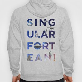 The Universe of Singular Fortean Hoody