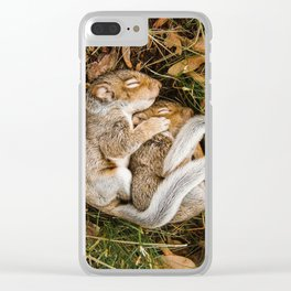 Two baby squirrels cuddling as they sleep Clear iPhone Case