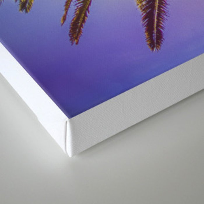 Vibrant Palm Canvas Print