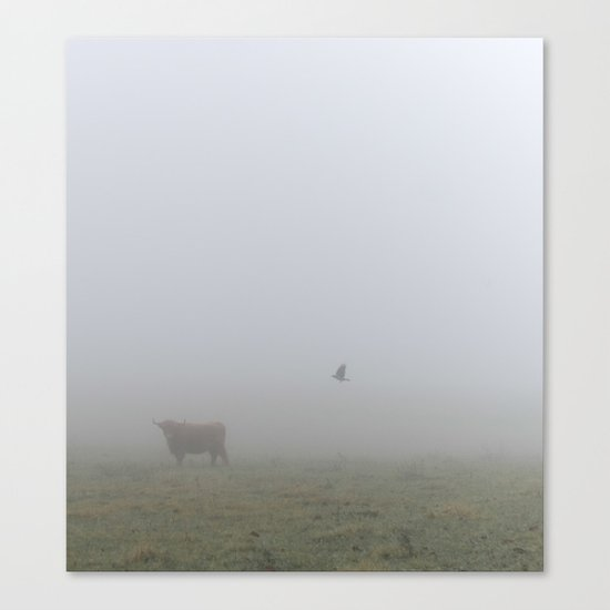 Cow and Crow Canvas Print