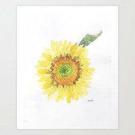 Sunflower With Green Center Art Print