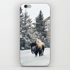 Frosty Bison iPhone & iPod Skin