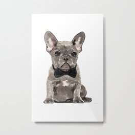 Gray, Blue, Gray Frenchie, Gray French bulldog, French bulldog, bow tie, Frenchie, Puppy, Metal Print