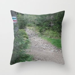 Trail in a mountains forest Throw Pillow