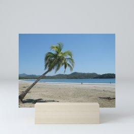 Palm Tree at the Beach Mini Art Print