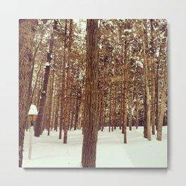Winter in the Poconos Metal Print