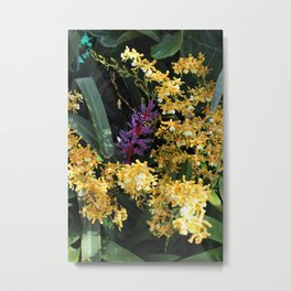 Bromeliad Surrounded by Tropical Yellow Flowers Metal Print