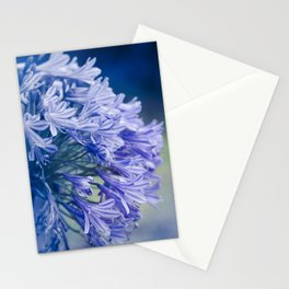 Born into Colour Stationery Cards