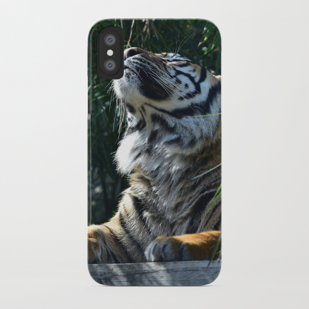 Sunbeam Pride Phone Case by Quillrow (PCS9875027) photo