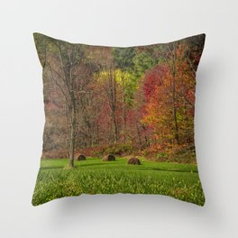 Lonely Bails of Color Throw Pillow