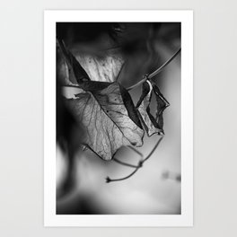the things left unsaid Art Print