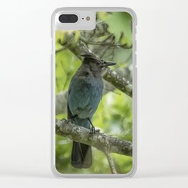 Keeping an Eye on Its Nest Clear iPhone Case