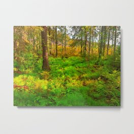 Forest in Autumn Colors Metal Print