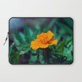 Just One Laptop Sleeve