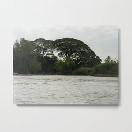 Tropical Forest Trees Evening Mekong River Ladscape, Laos Metal Print