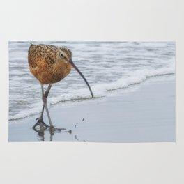 Long Billed Curlew Rug