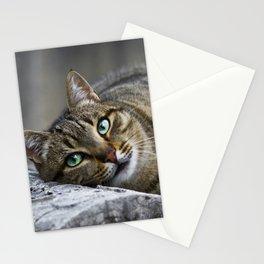 Gata Romana Stationery Cards