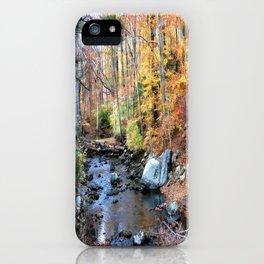 Autumn Woodlands iPhone Case