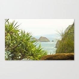 Cliffs in Hawaii Canvas Print