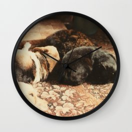 Cats and dogs sleeping on the carpet Wall Clock