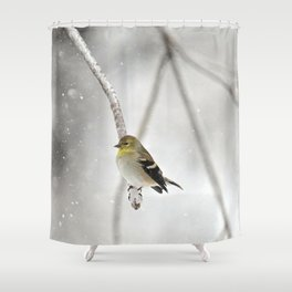 Goldfinch Clinging to an Icy Branch Shower Curtain
