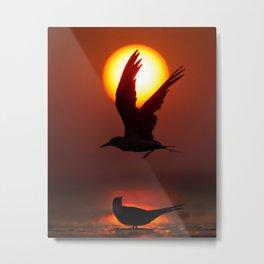 Sunset Silhouette Birds Metal Print