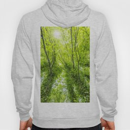Wild nature parks VII - Nature Fine Art photography Hoody