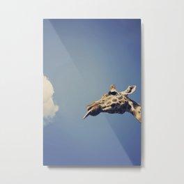 Giraffe eating candy floss Metal Print