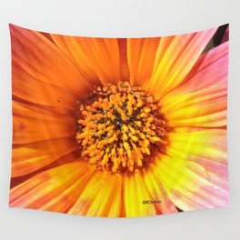 A March 1st Colorburst Wall Tapestry