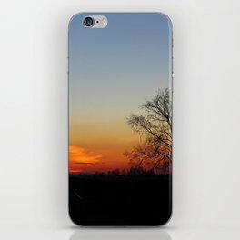 Sunset tree iPhone Skin